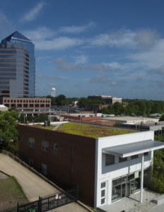 Completed in February 2013, the 2,343-square-foot Xero Flor green roof atop The Republik Building is the first green roof installed on a building in Durham's downtown historic district.