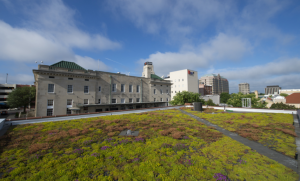 Xero Flor green roof mats are rolled out like sod on rooftops. They are installed atop three system components, which are also delivered in rolls for ease of installation.