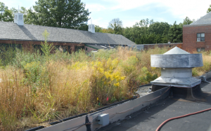 Consulting and engineering firm Geosyntec Consultants is monitoring and controlling runoff from an existing New York City Parks and Recreation facility green roof.