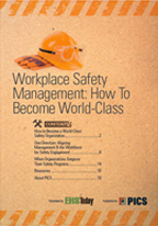 "PICS Auditing LLC recently published its eBook collaboration, ""Workplace Safety Management: How to Become World Class."""