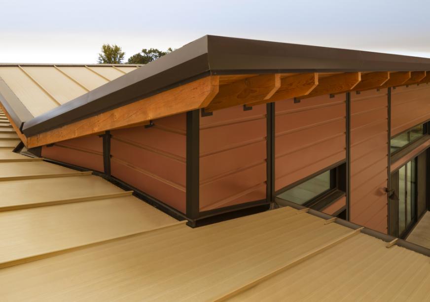 Metal Roof And Walls Help Home Reach Lofty Design Goals