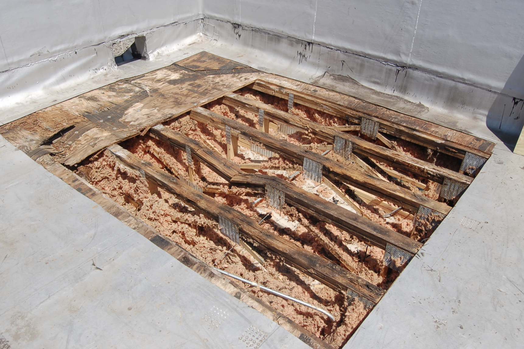 Roof Rot Ignorance Is An Easy Way To Damage Low Slope