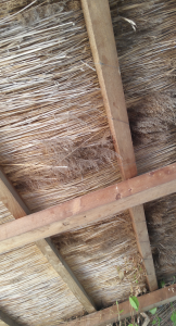 Photo 4. A view of the underside of a thatch roof. Village Museum in Bucharest. Photo: Ana-Maria Dabija.