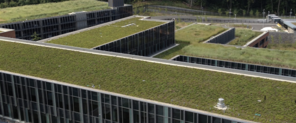 Douglas A. Munro Coast Guard Headquarters Boasts One of World's Largest Green Roofs