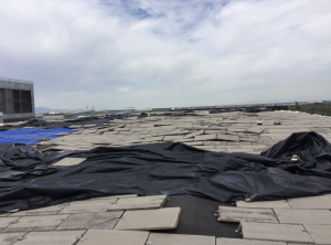 sika sarnafil Archives - Roofing