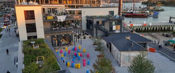At The Wharf, Vegetative Roofs Play a Key Role in Storm Water Management